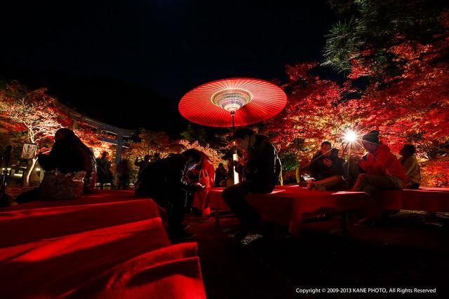 20121124-980C2006-永觀堂夜觀