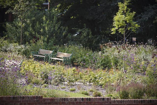 Garden/ Lloyd Park