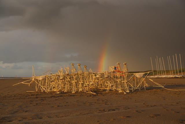 uros kirn 3 apodiacula at silent beach 2013