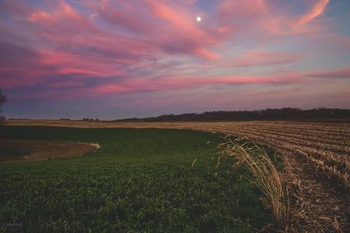 sunset sky moon field clouds rural farm country crop fields alfalfa