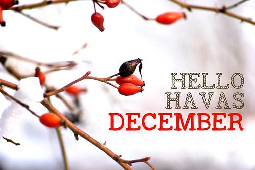 hello-havas-december copy