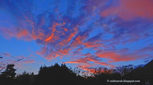 Sunset 2044