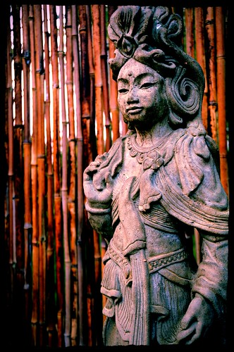 Bodhisattva Quan Yin, the female Buddha, statue, bamboo fence, A Garden for the Buddha, Seattle, Washington, USA by Wonderlane