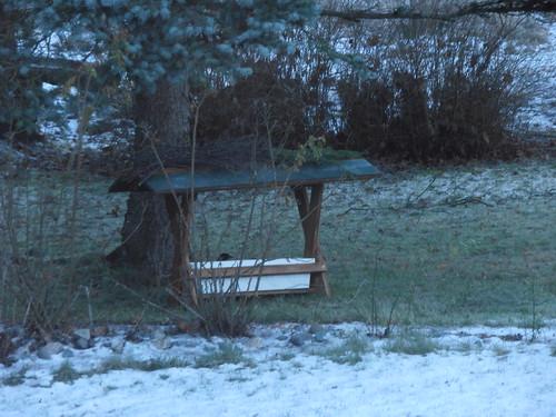 talvi 2013 071