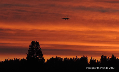 airplanes sunsets excapture nikonflickraward