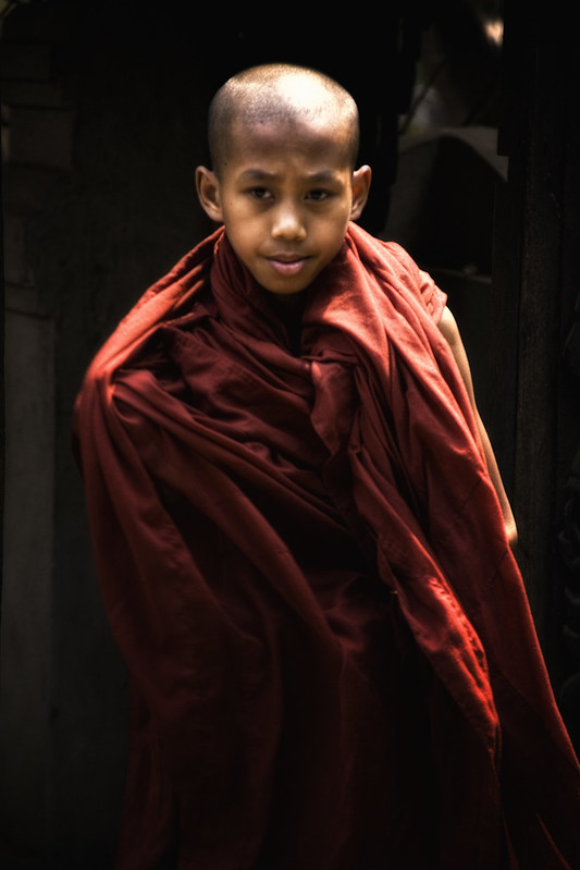 A Young Burmese Novice Monk