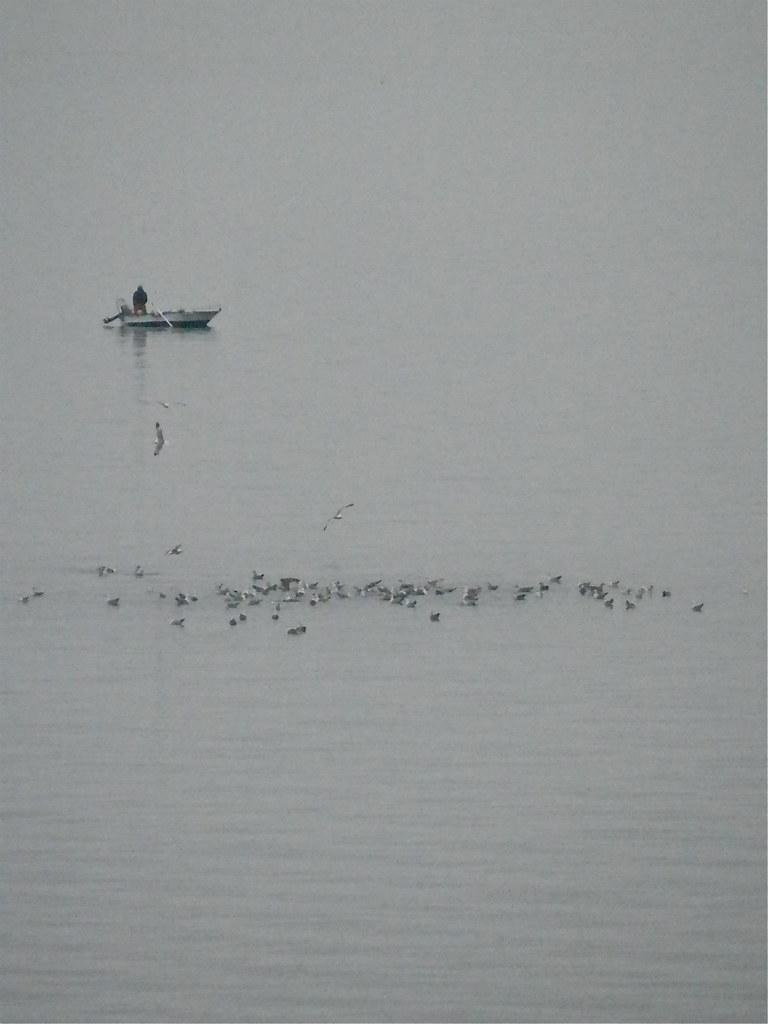 Foto no mejorable del mar quieto