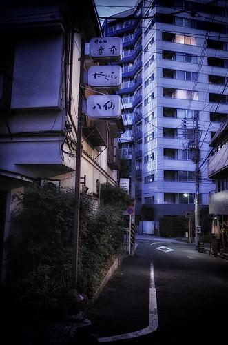 2014.01.26(R0014359LR_GR_Dark Contrast Glow