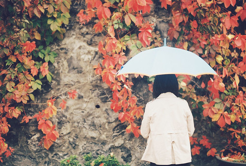 Analog Diary: I stole an autumn
