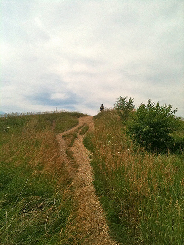 Hikes Near Chicago: Glacial Park McHenry County Illinois (7/19/11)