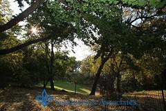 Park02__wm