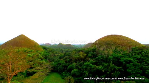 Bohol Chocolate Hills 2014