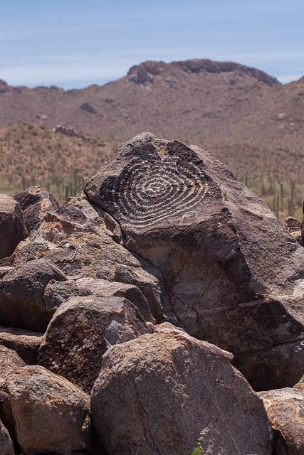 Petroglyphs in Saguaro National Park