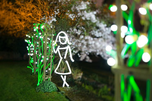 In The Light Garden (Girl In Rose Garden Lightpainting), Kent by flatworldsedge