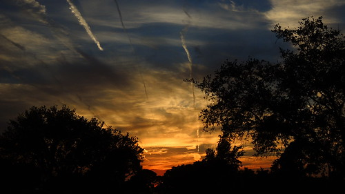 blue sunset wallpaper sky orange sun tree silhouette yellow night clouds landscape evening flickr contrail florida palm bradenton cloudsstormssunsetssunrises