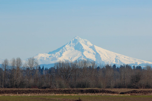cascaderange frenchmansbarregionalpark greatbackyardbirdcount landform mounthood mountain