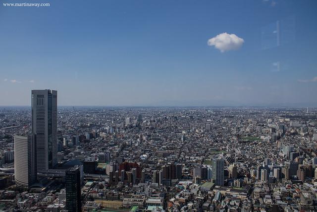 Il Monte Fuji visto dal Tokyo Metropolitan Government Office