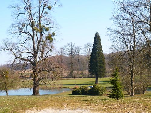 Parc du château de Scy