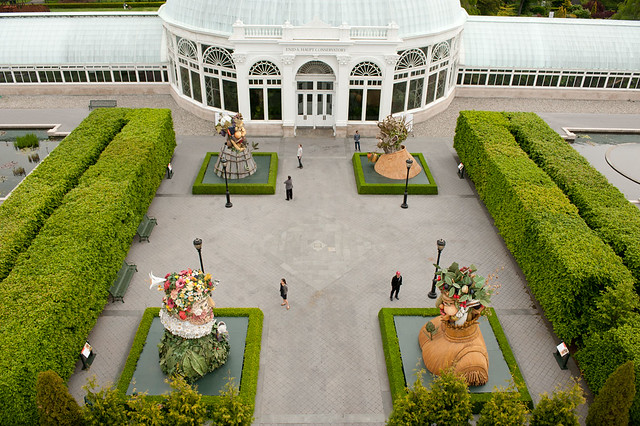 Taken from the NYBG Website - NOT MY WORK
