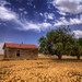 Retired Homestead by Fort Photo