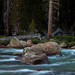 Tuolumne River Rapids at Dusk