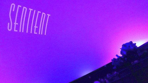 Sentient Title shot at Planetarium