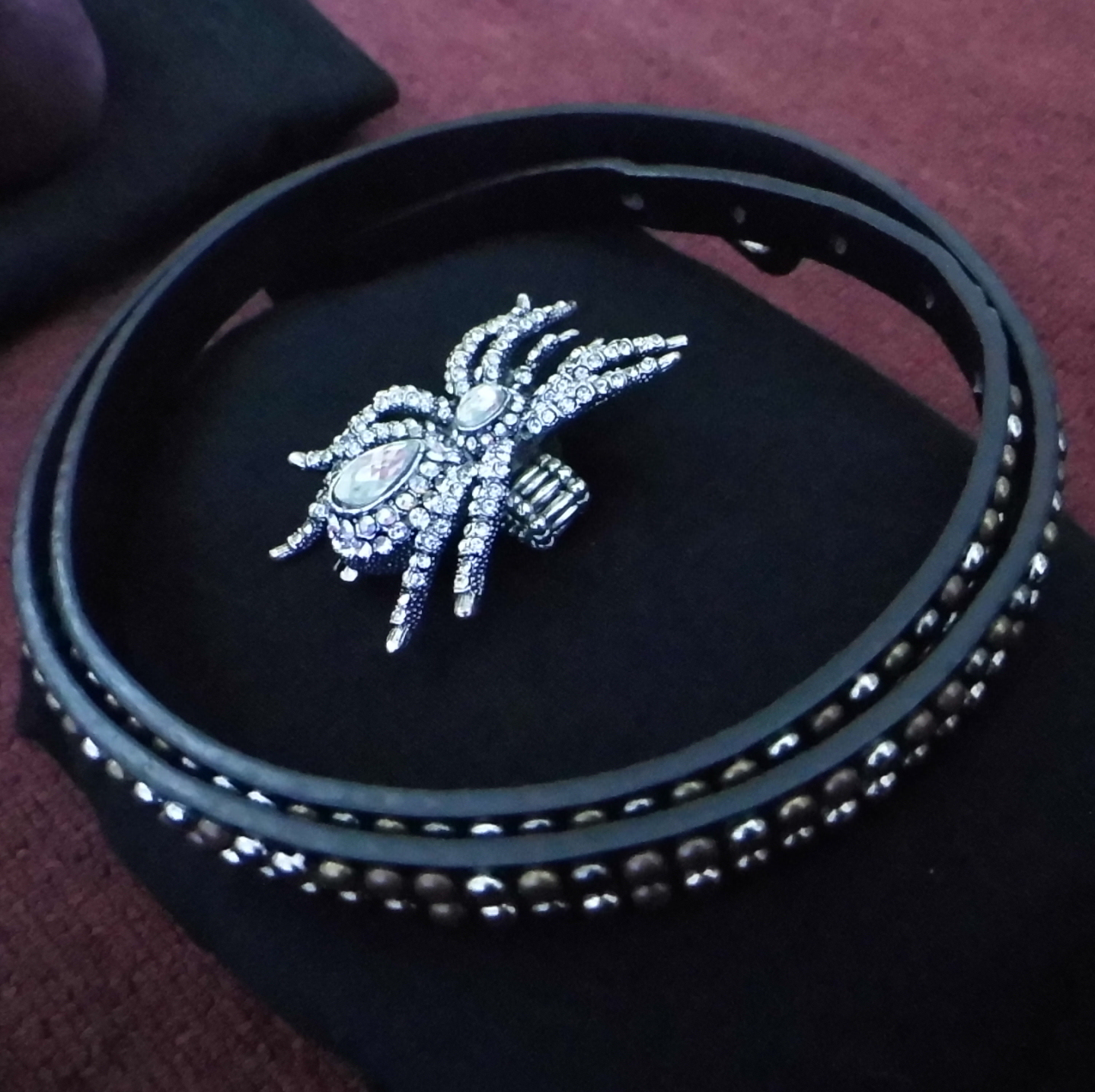 Studded Belt and Spider Ring