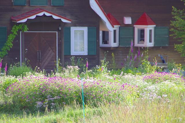 押し花の家2