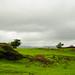 Varandha_Ghat-15