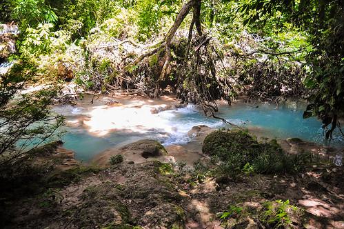 Cascadas de Agua Azul (20)