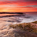Bilgola Shelf Sunrise by sachman75