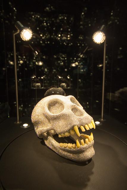 diamonds museum amsterdam skull