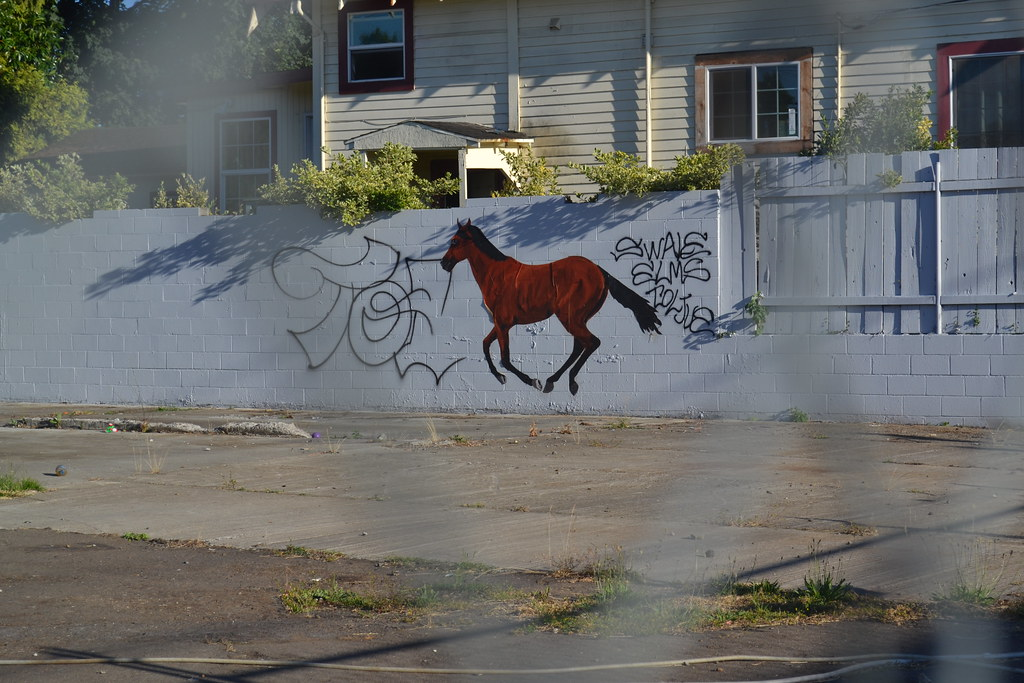 RAT KING, PORTLAND, Graffiti, Street Art, Hand Painted, Horse,