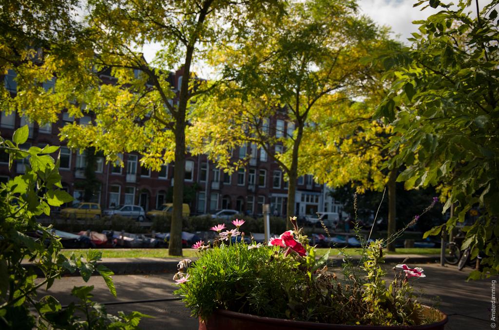 Amsterdam, Sunny October Days