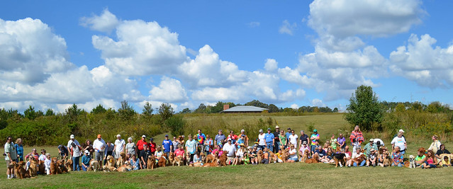 2013 Rescue Romp Group Photo