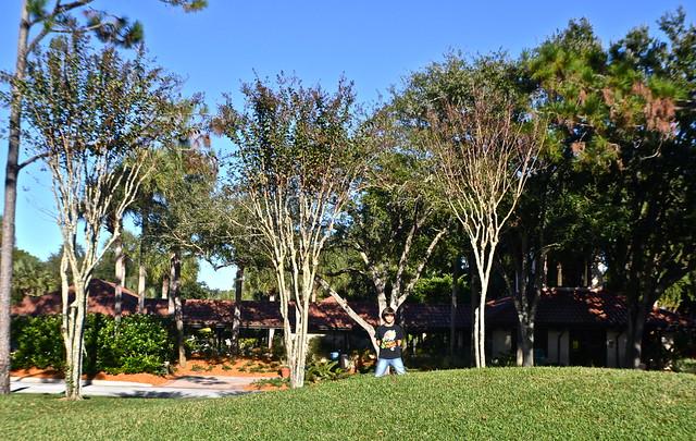 Cypress Gardens Villas and Golf Resort, Orlando Florida