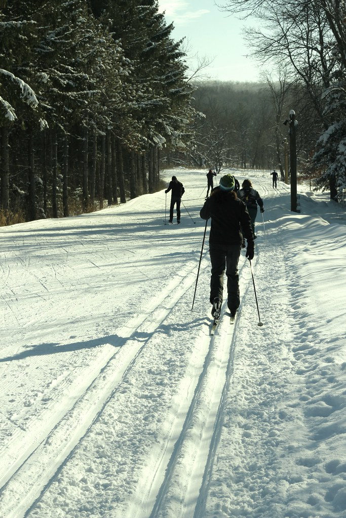 Cross Country Ski Morning