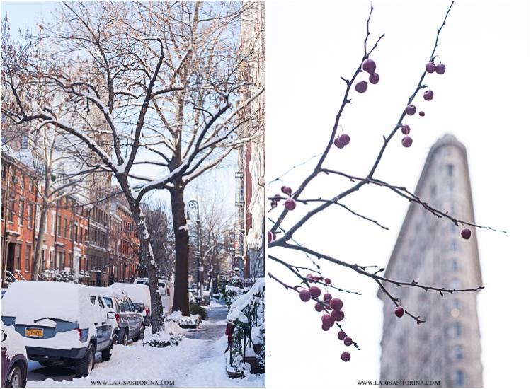 january-snow-02
