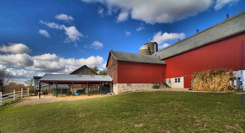 Fall at Emslie Farm Waukesha Wisconsin by sheldn