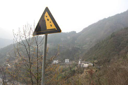 茶樹,大面積的種植在陡峭的山坡上,如果一陣豪大雨,恐怕後果不堪設想