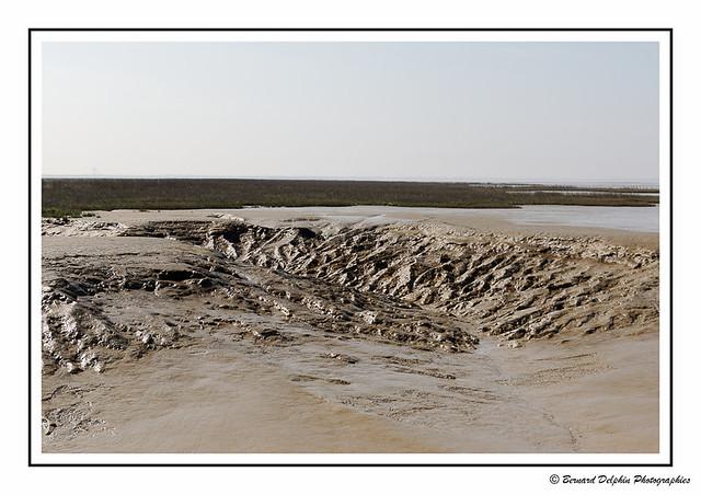Marée basse dans la baie de l'Aiguillon