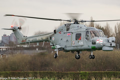 ZF557 - 1987 build Westland Lynx HMA.8SRU, visiting Barton during the last week of service for the type with the Royal Navy