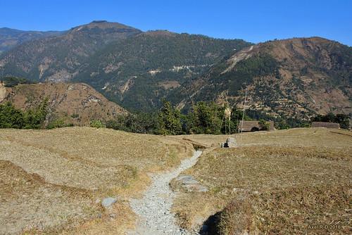 champs kangel montagnes necha nepal préci sentier solukhumbu