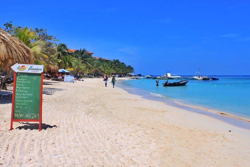 The Most Amazing Things To Do In Roatan Honduras