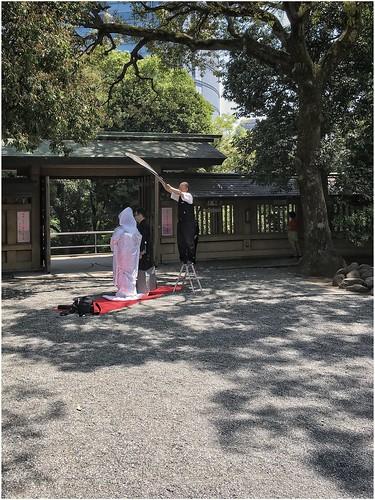 Wedding at Togo-Jinja shrine (Tokyo)