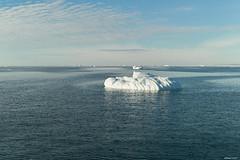 Marguerite Bay ice