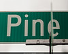 """Pine"" -- 233 Clicks. 37 photos. 46 minutes. 19th Avenue. Seattle"