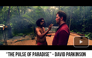 'The Pulse of Paradise' - David Parkinson