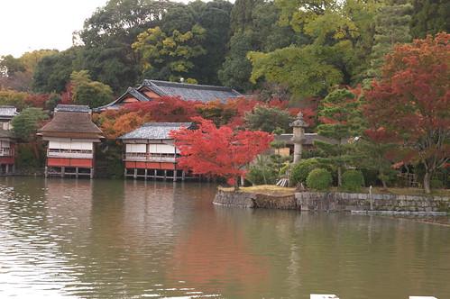 【写真】2012 紅葉 : 長岡天満宮/2020-10-09/IMGP6551