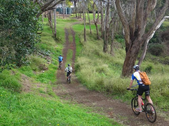 Bridle Trail - Jubilee Park